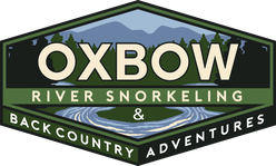 Oxbow River Snorkeling